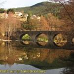 salendrinque-CD- 2-02-16-03