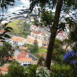 porto Moniz et agapantes