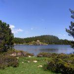 Lacs-Carlit-FL-22-06-16-31