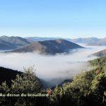 Peyregrosse-CD-6-12-16-2