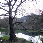 Monthaut-CD-03-01-17-01