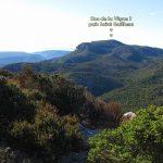 Monthaut-CD-03-01-17-13