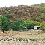 Madieres-19-09-17-CD-08