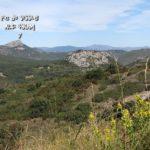 Drailles-Crozes-CD-2-10-18-17