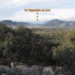 Roquette-8-1-19-CD-06