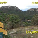Roquette-8-1-19-CD-12